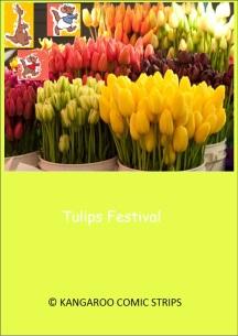 tulips-festival